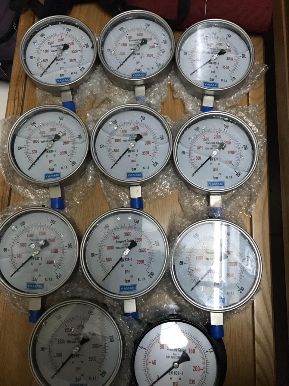 Đồng hồ áp suất Yamaki mặt 150mm, chân inox 316